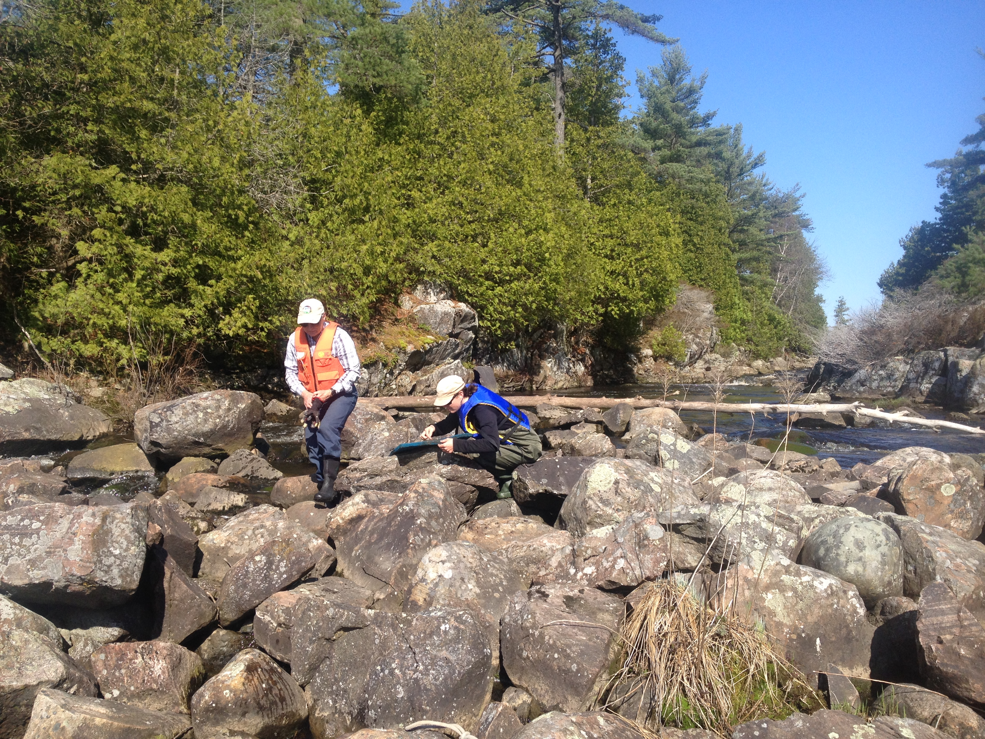 Assessing walleye egg deposition on the Key River.